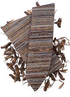 Delysia-Chocolatier-Cricket-Dark-Chocolate-Bark-Austin-Texas-Shop-1p