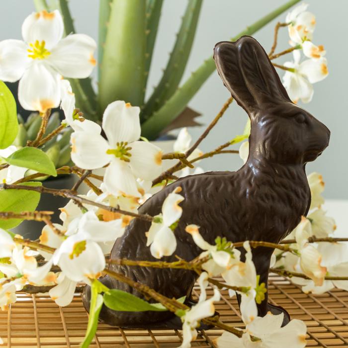 Delysia-Chocolatier-Easter-Bunny-Molded-Chocolate-4 (6)