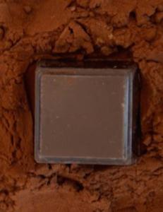 delysia dark chocolate and cocoa