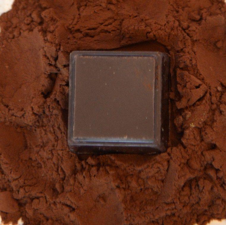 dark chocolate truffle in cocoa powder