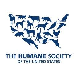 The Humane Society is always looking for volunteers